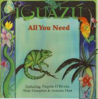 IDavid Clive Music - Iguazu - All You Need